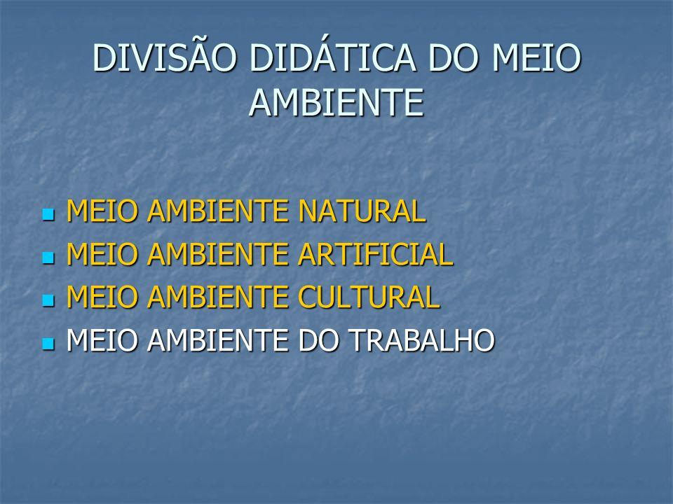 DIVISÃO DIDÁTICA DO MEIO AMBIENTE