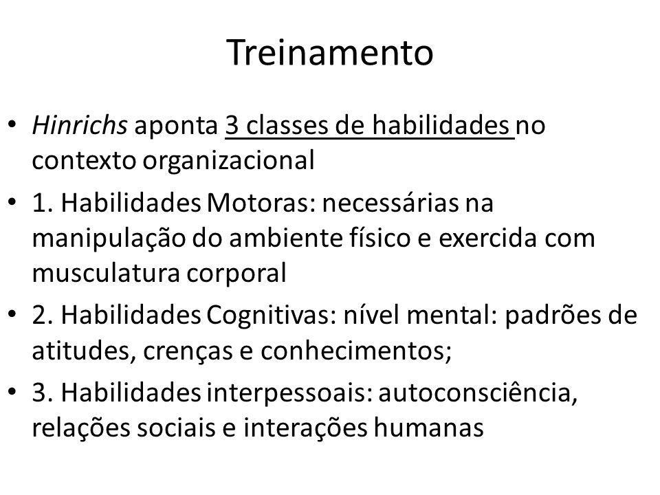 Treinamento Hinrichs aponta 3 classes de habilidades no contexto organizacional.
