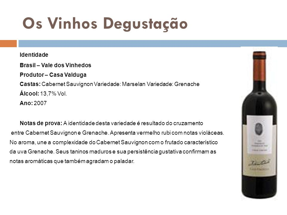Os Vinhos Degustação Identidade Brasil – Vale dos Vinhedos