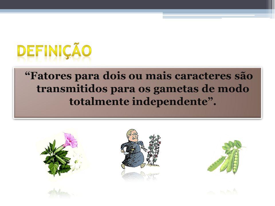 Definição Fatores para dois ou mais caracteres são transmitidos para os gametas de modo totalmente independente .