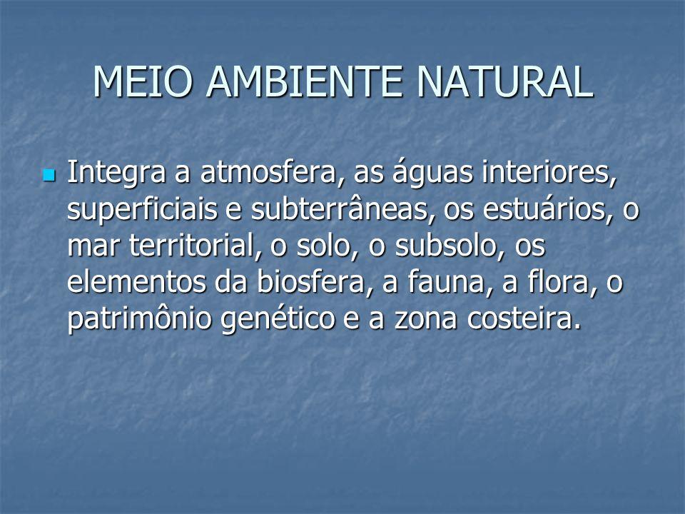 MEIO AMBIENTE NATURAL