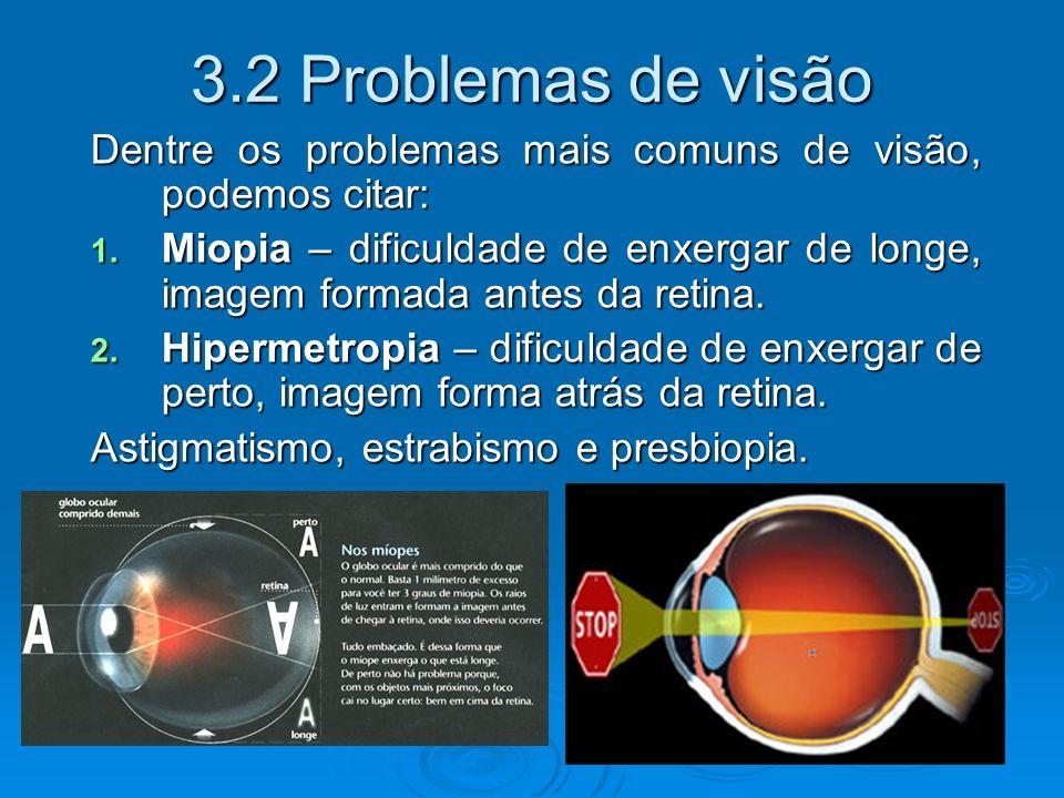3.2 Problemas de visão Dentre os problemas mais comuns de visão, podemos citar: