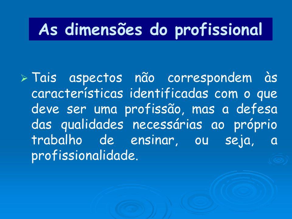 As dimensões do profissional