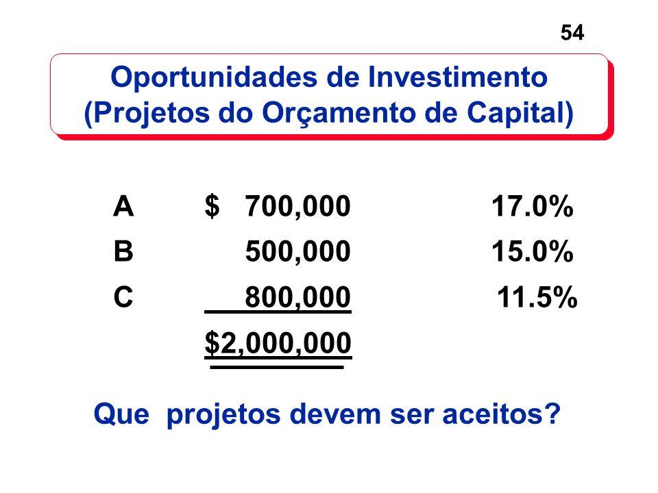 Oportunidades de Investimento (Projetos do Orçamento de Capital)
