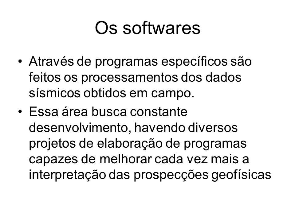 Os softwares Através de programas específicos são feitos os processamentos dos dados sísmicos obtidos em campo.