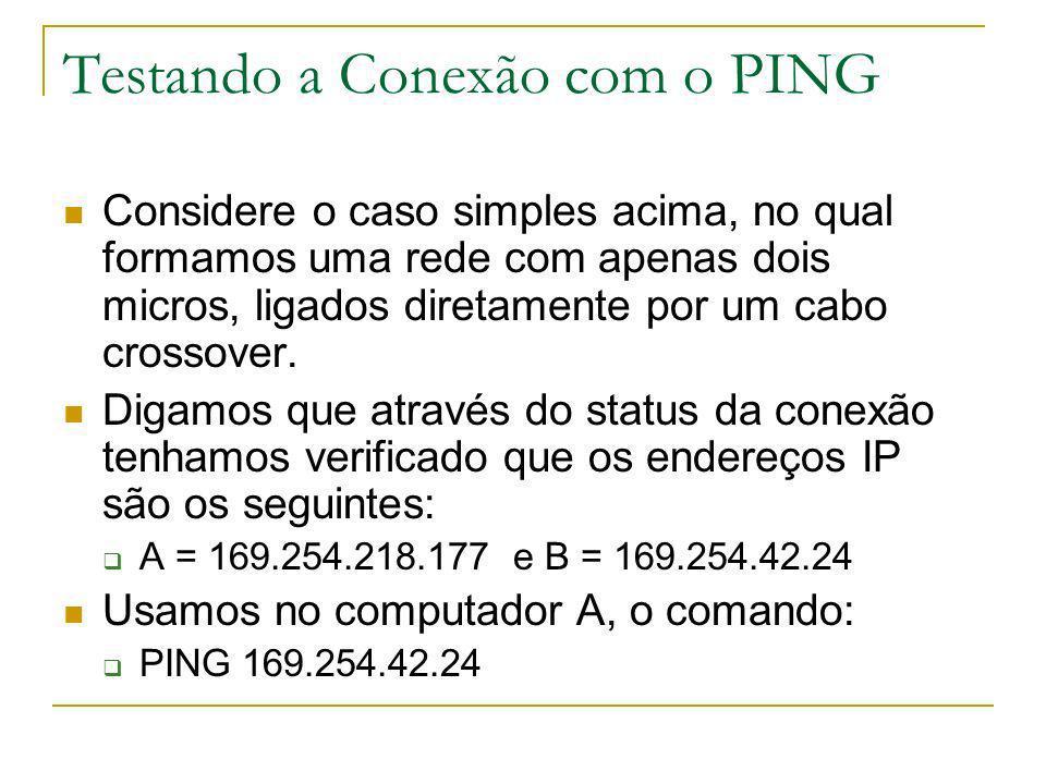 Testando a Conexão com o PING