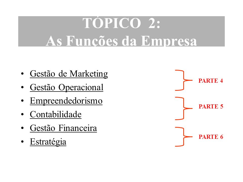 TÓPICO 2: As Funções da Empresa