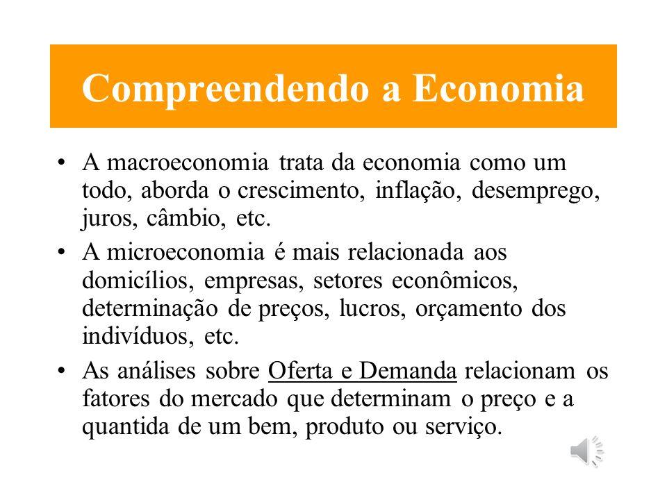 Compreendendo a Economia