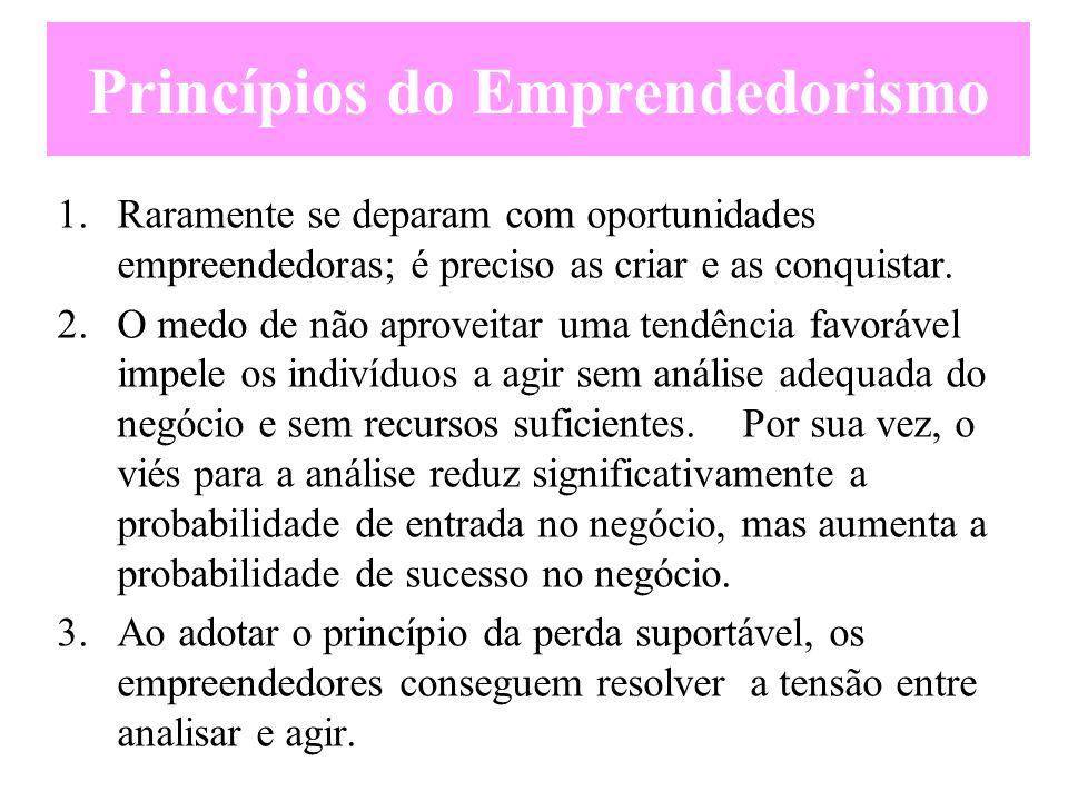 Princípios do Emprendedorismo