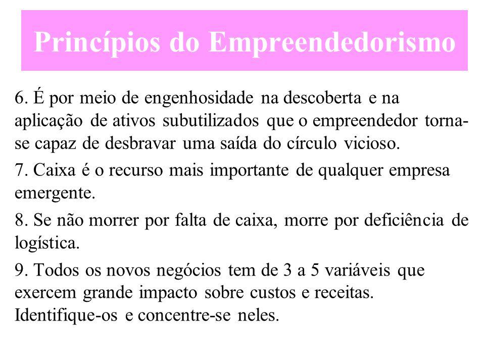 Princípios do Empreendedorismo