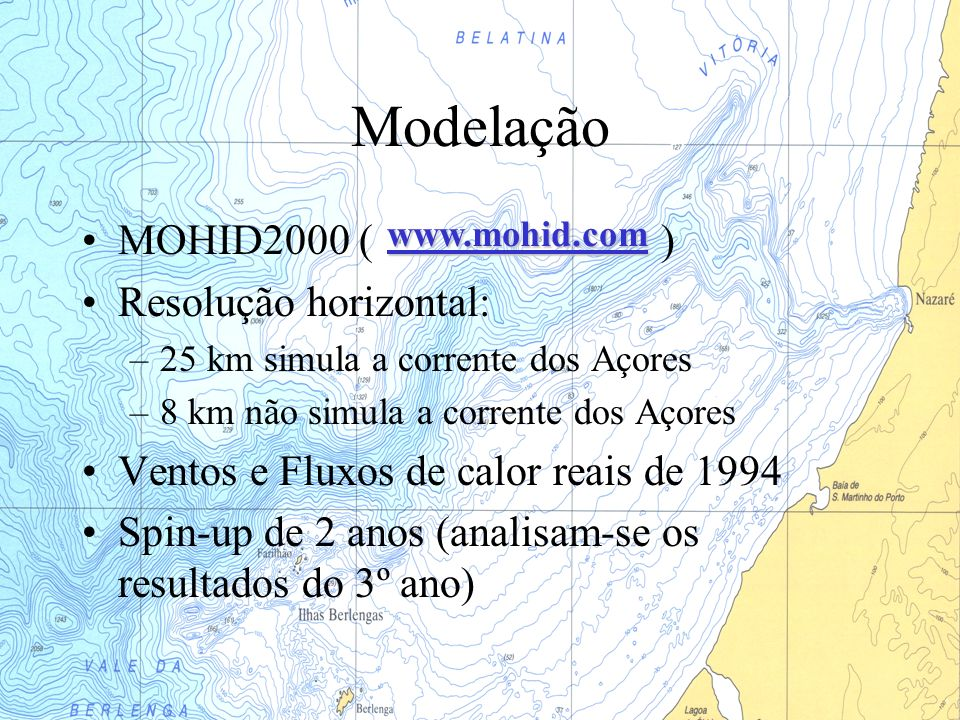 Modelação MOHID2000 ( ) Resolução horizontal: