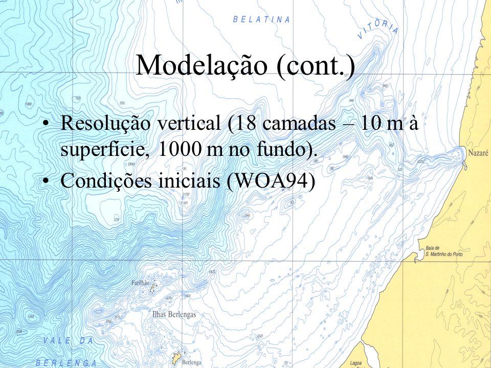 Modelação (cont.) Resolução vertical (18 camadas – 10 m à superfície, 1000 m no fundo).