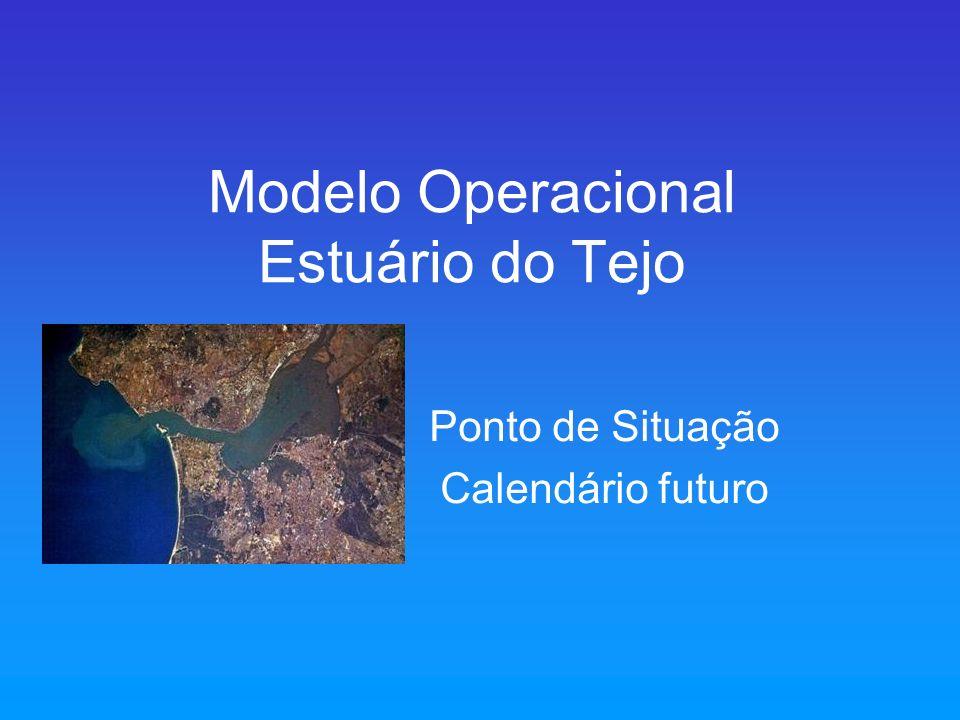 Modelo Operacional Estuário do Tejo