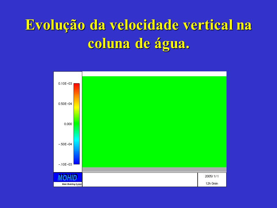 Evolução da velocidade vertical na coluna de água.
