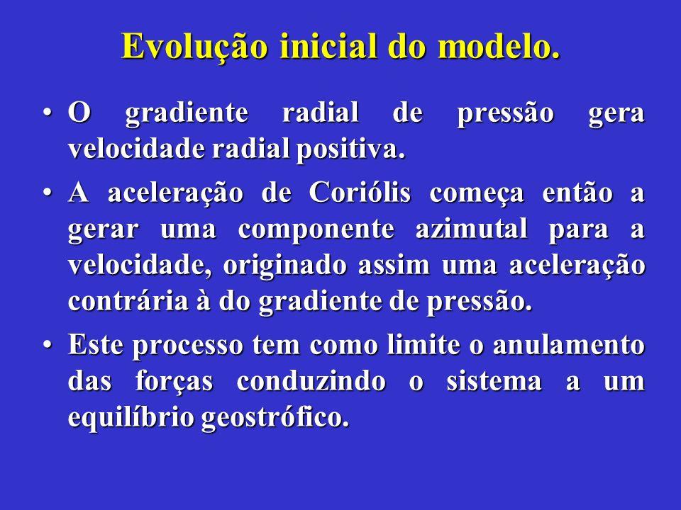 Evolução inicial do modelo.