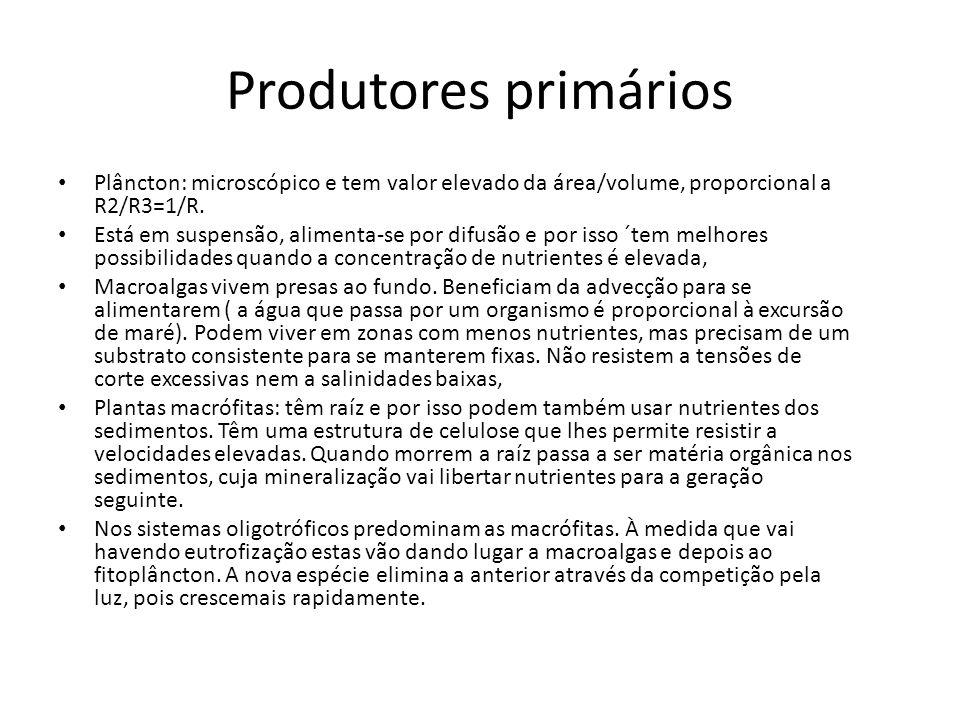 Produtores primários Plâncton: microscópico e tem valor elevado da área/volume, proporcional a R2/R3=1/R.