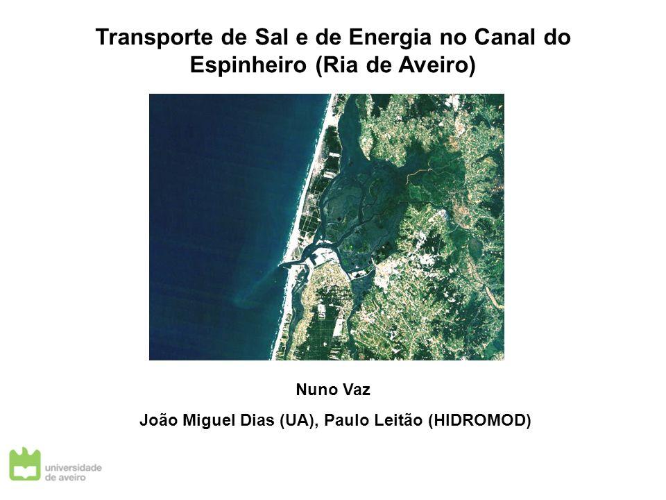 Transporte de Sal e de Energia no Canal do Espinheiro (Ria de Aveiro)