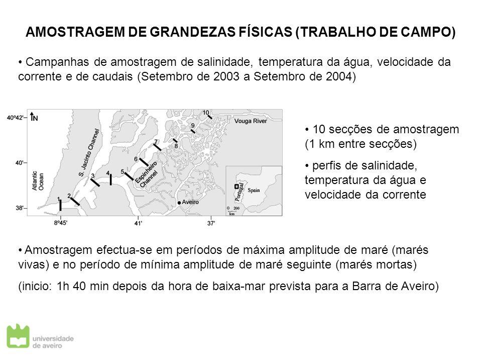AMOSTRAGEM DE GRANDEZAS FÍSICAS (TRABALHO DE CAMPO)