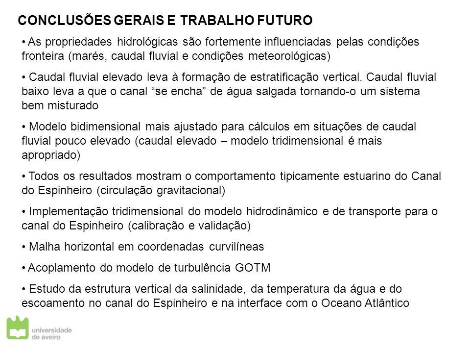 CONCLUSÕES GERAIS E TRABALHO FUTURO