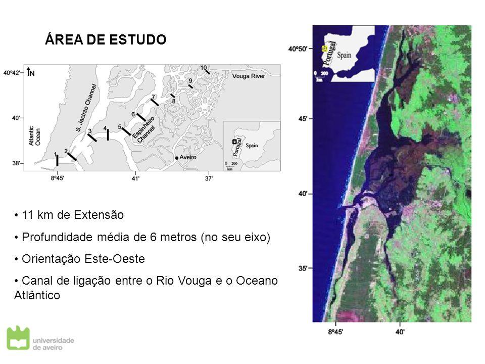ÁREA DE ESTUDO 11 km de Extensão
