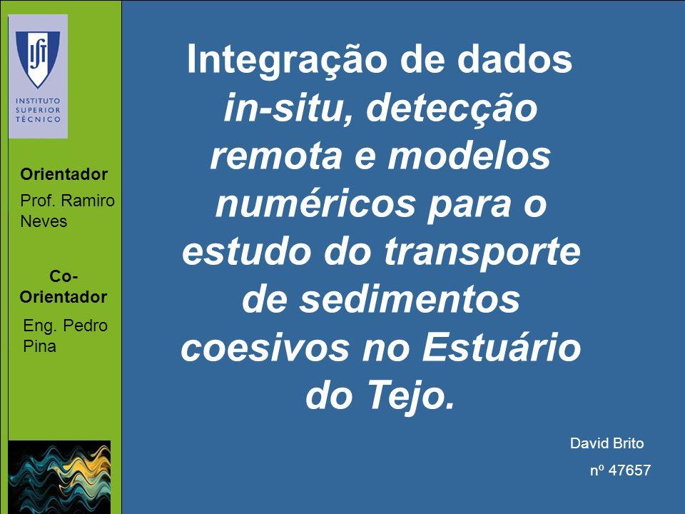 Integração de dados in-situ, detecção remota e modelos numéricos para o estudo do transporte de sedimentos coesivos no Estuário do Tejo.