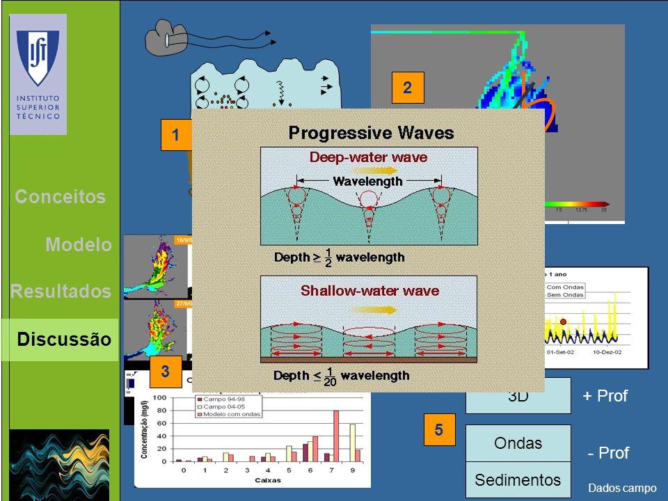 Conclusões Conceitos Modelo Resultados Discussão 2 1 4 3 3D + Prof 5