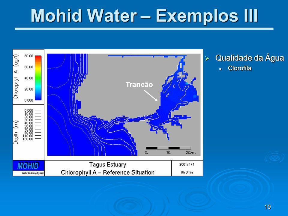 Mohid Water – Exemplos III