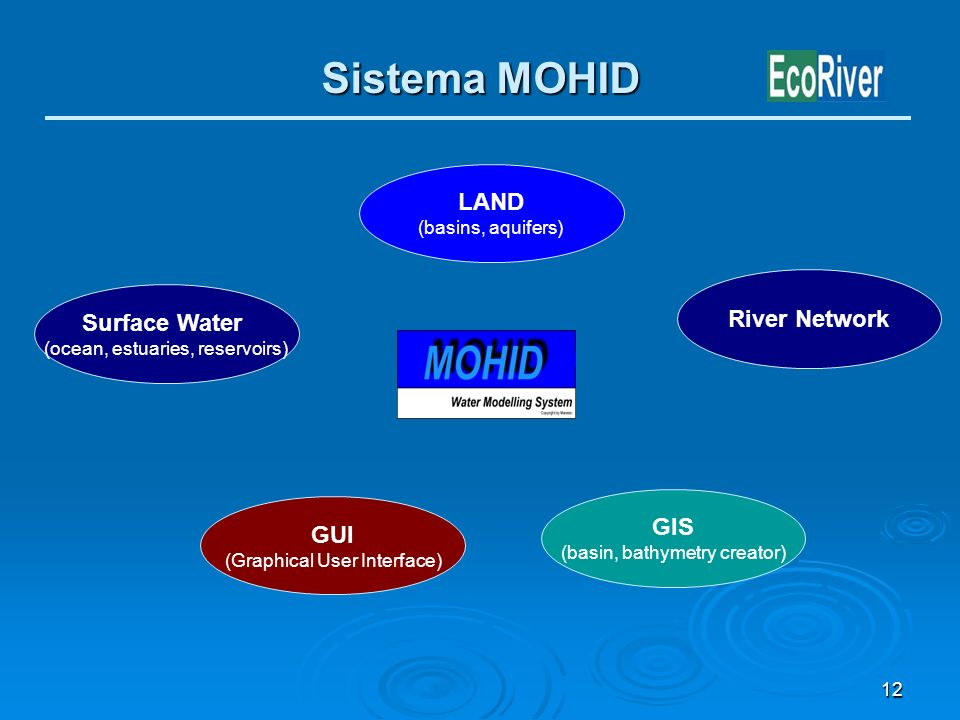 Sistema MOHID LAND River Network Surface Water GIS GUI