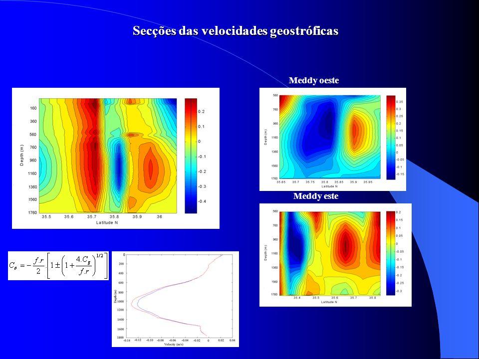 Secções das velocidades geostróficas