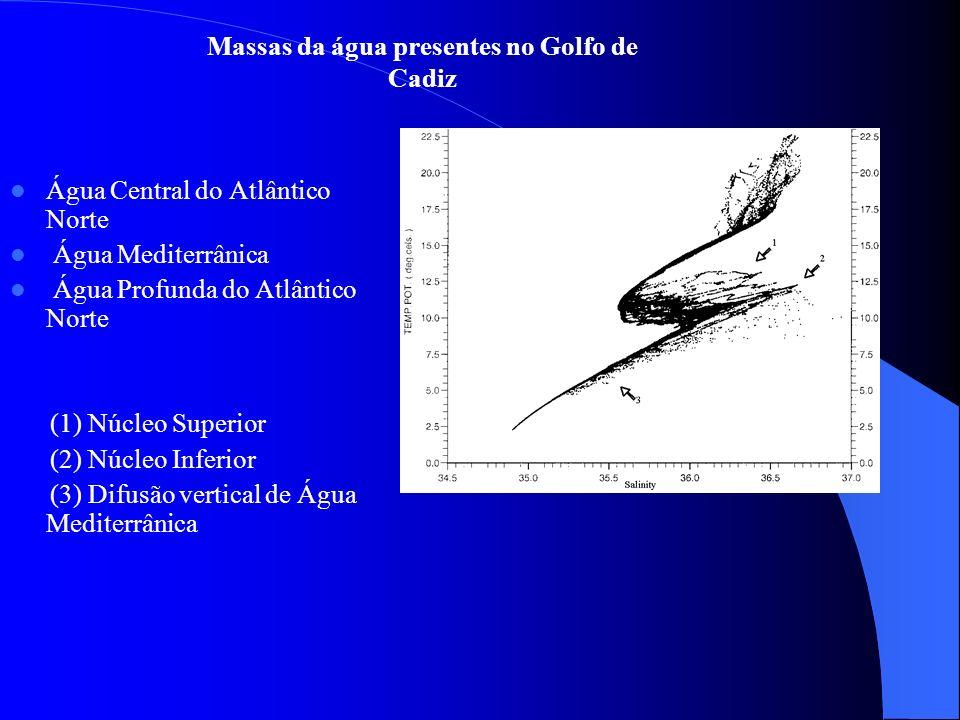 Massas da água presentes no Golfo de Cadiz