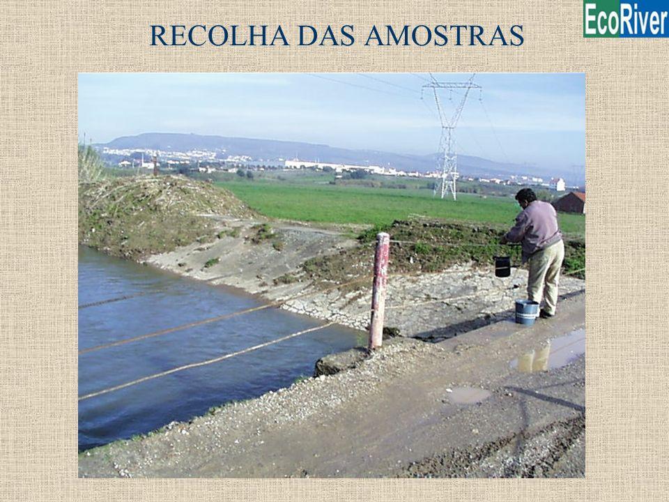 RECOLHA DAS AMOSTRAS