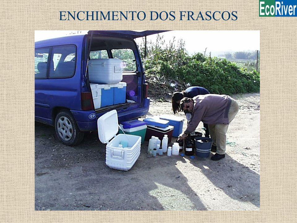 ENCHIMENTO DOS FRASCOS