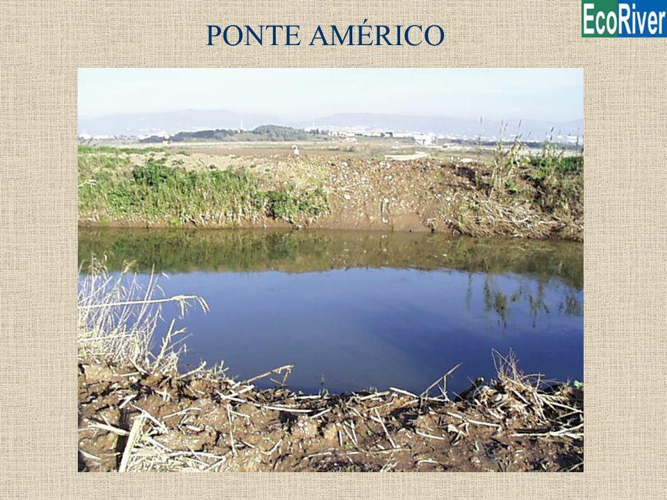 PONTE AMÉRICO