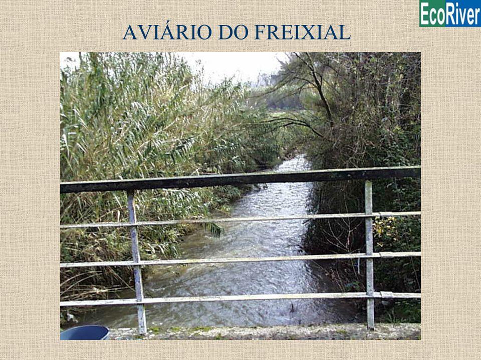 AVIÁRIO DO FREIXIAL