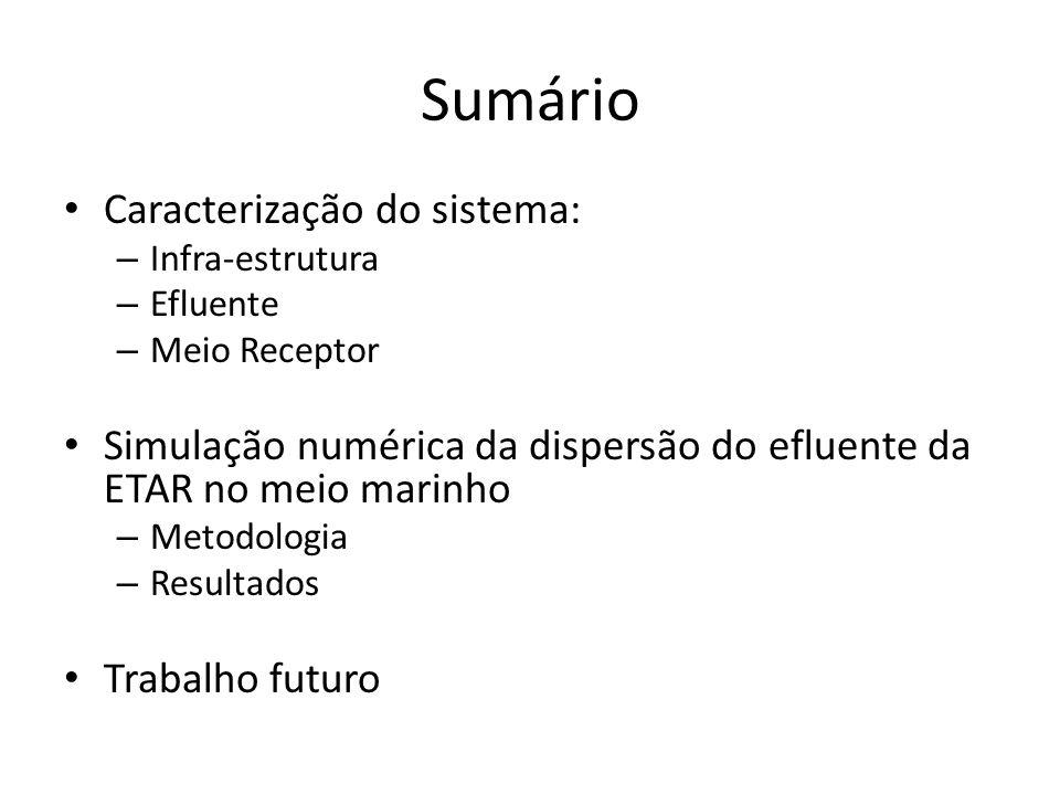Sumário Caracterização do sistema: