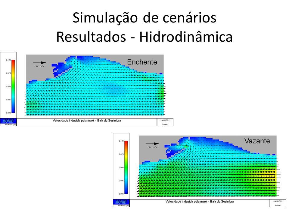 Simulação de cenários Resultados - Hidrodinâmica