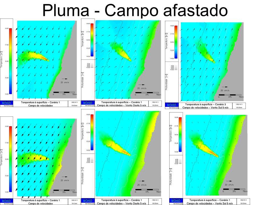 Pluma - Campo afastado