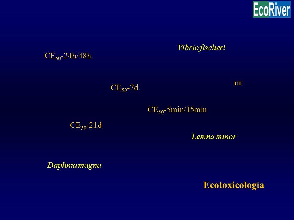Ecotoxicologia Vibrio fischeri CE50-24h/48h UT CE50-7d CE50-5min/15min