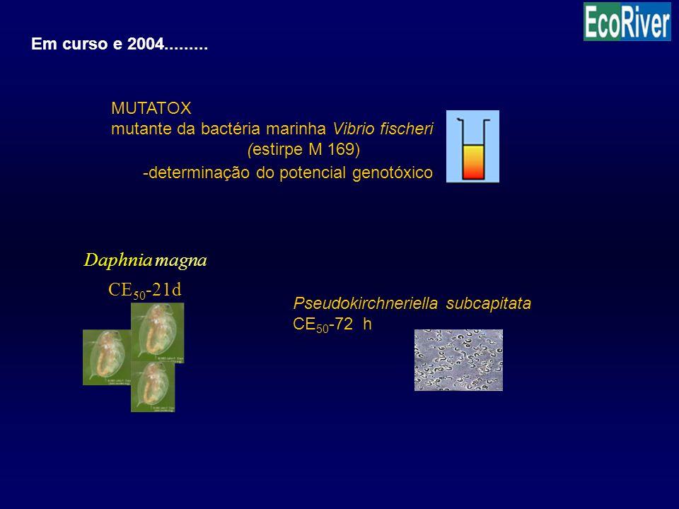 Daphnia magna CE50-21d Em curso e 2004......... MUTATOX