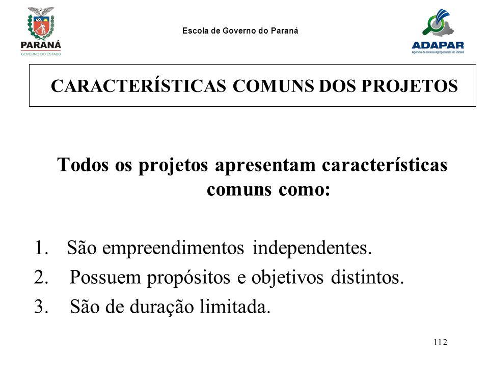CARACTERÍSTICAS COMUNS DOS PROJETOS