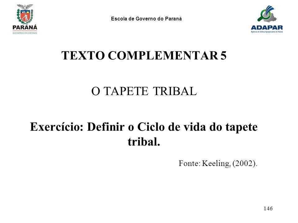 Exercício: Definir o Ciclo de vida do tapete tribal.