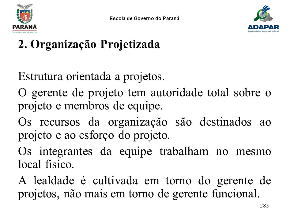 2. Organização Projetizada