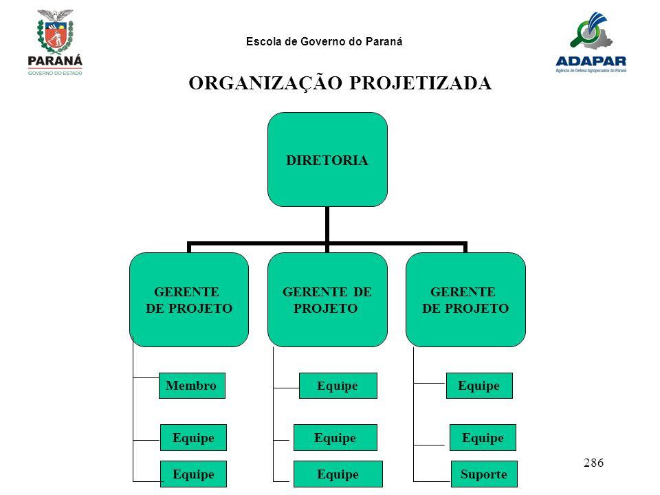 ORGANIZAÇÃO PROJETIZADA