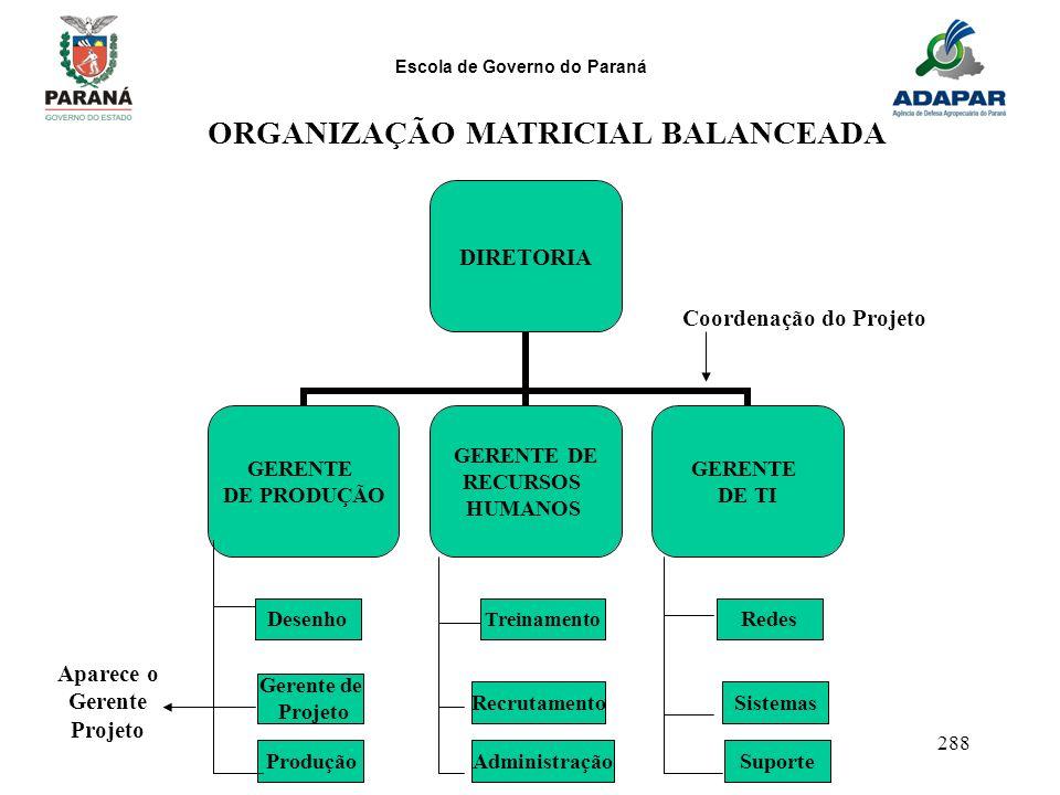 ORGANIZAÇÃO MATRICIAL BALANCEADA Aparece o Gerente Projeto