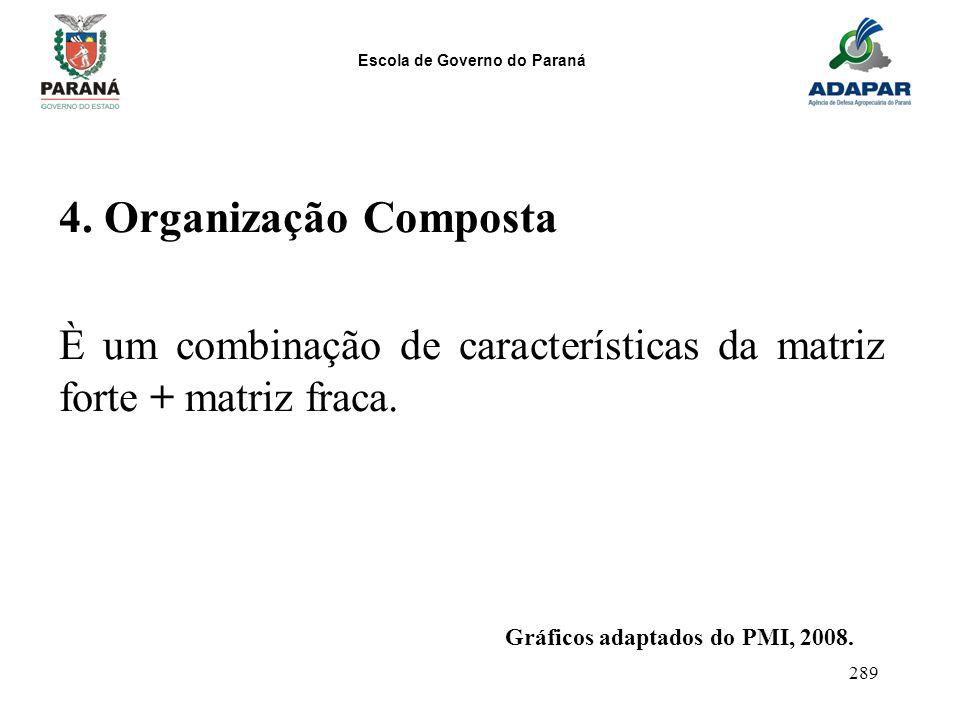 4. Organização Composta È um combinação de características da matriz forte + matriz fraca.