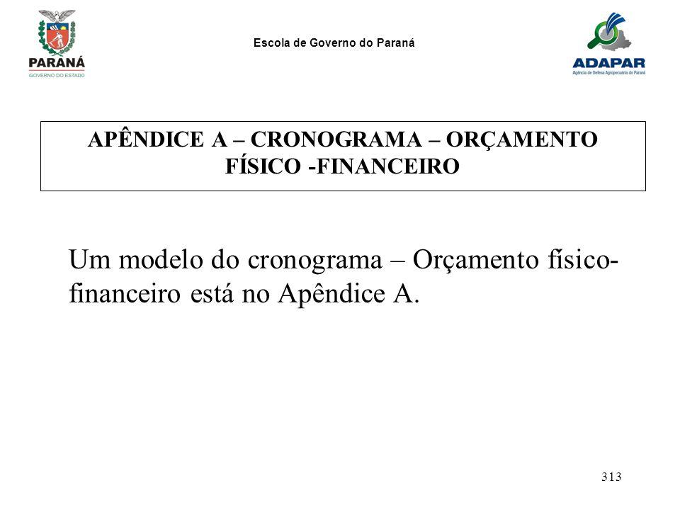 APÊNDICE A – CRONOGRAMA – ORÇAMENTO FÍSICO -FINANCEIRO