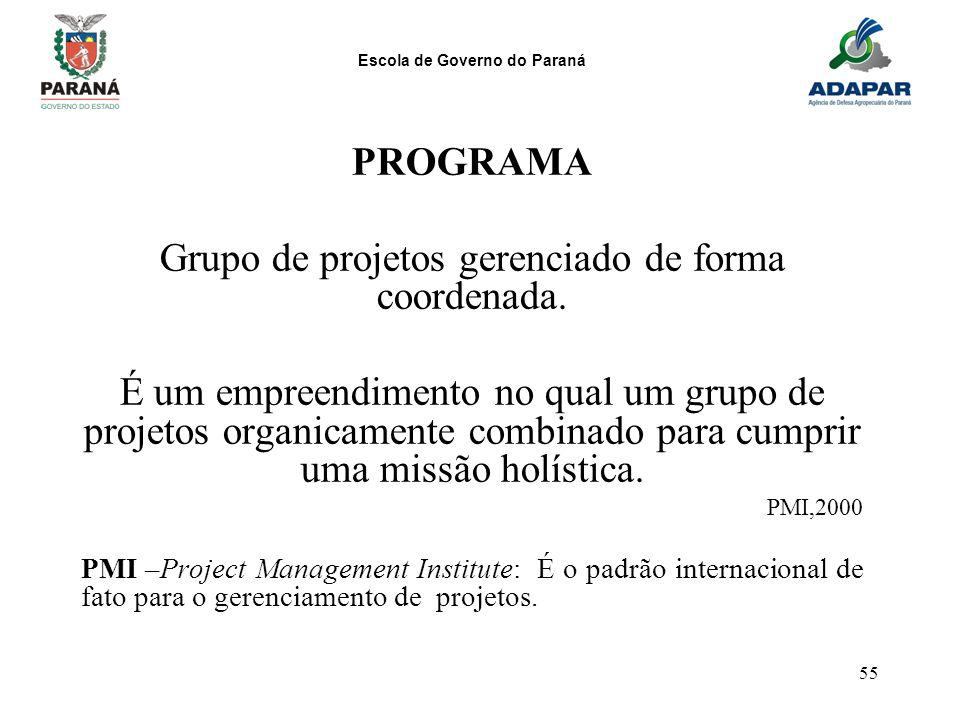 Grupo de projetos gerenciado de forma coordenada.