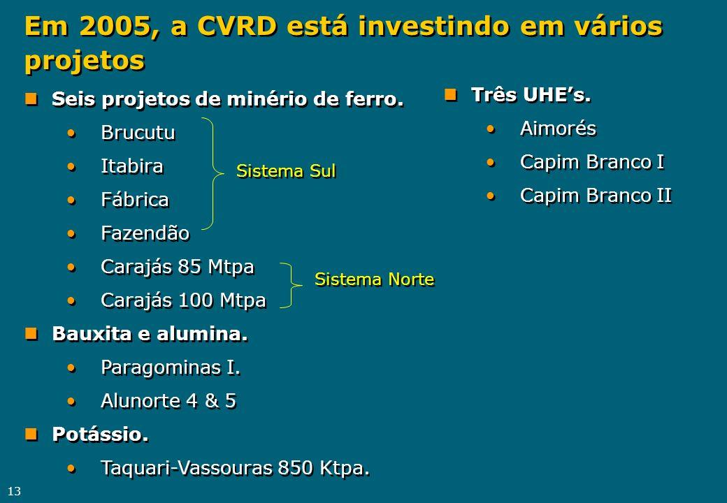 Em 2005, a CVRD está investindo em vários projetos