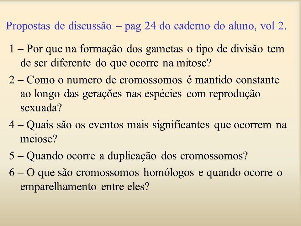 Propostas de discussão – pag 24 do caderno do aluno, vol 2.