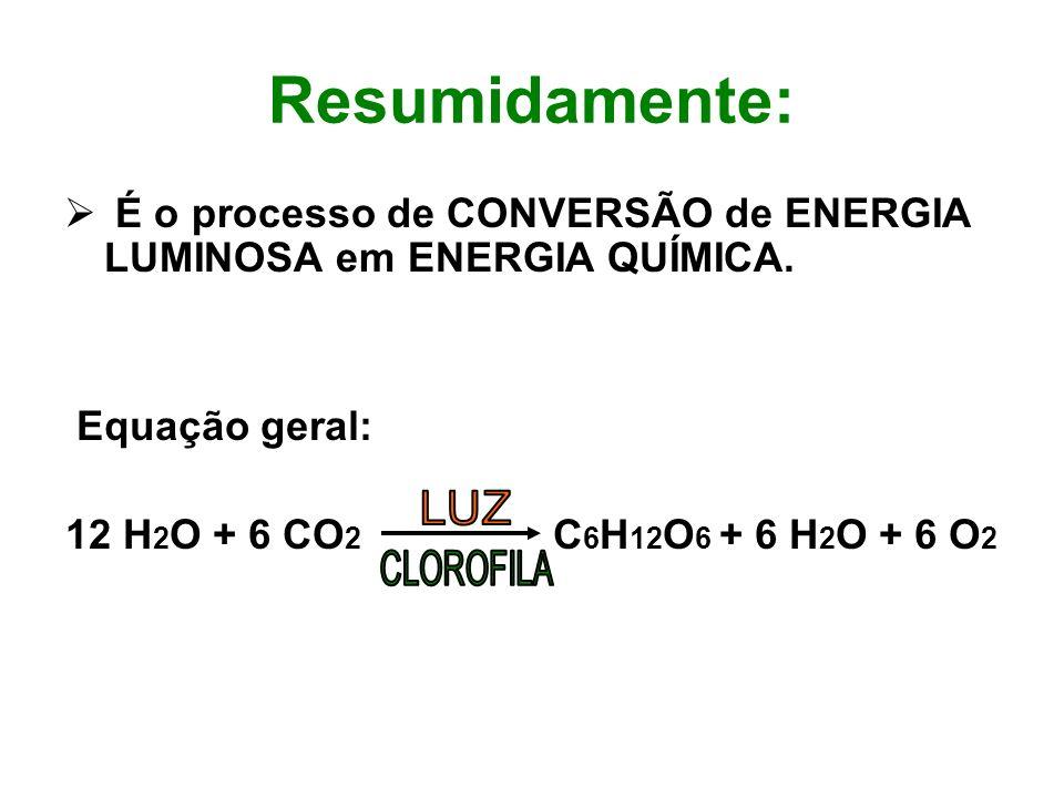 Resumidamente: É o processo de CONVERSÃO de ENERGIA LUMINOSA em ENERGIA QUÍMICA. Equação geral: